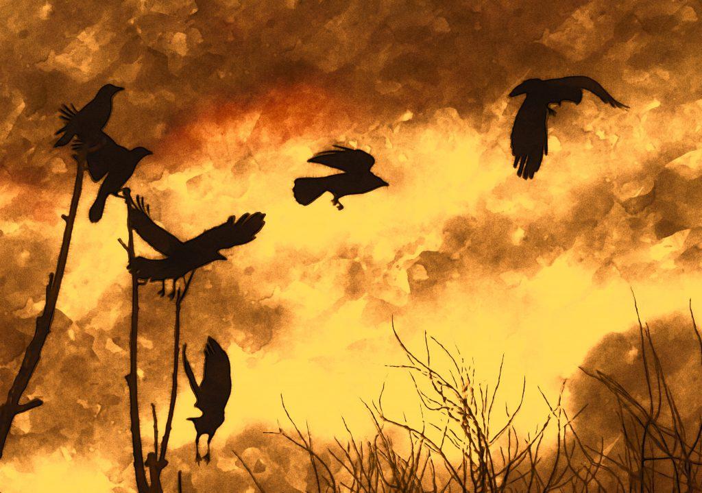 He pasado bajo bandadas de cuervos que vuelan frenéticos sobre la tierra removida del cementerio de tu barrio.